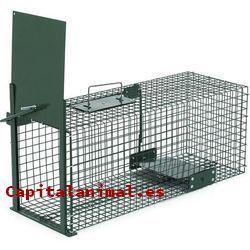 Mejores jaulas para gallos de este mes - Dónde comprarlas online