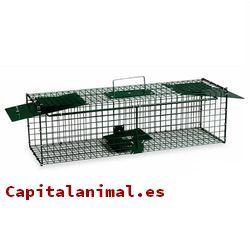 jaulas trampa para gatos baratos