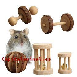 Mejores juguetes para hamster - Dónde comprar online
