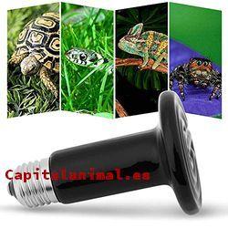 lamparas de infrarrojos para reptiles baratos