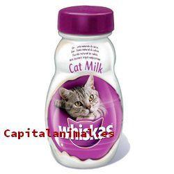 leche maternizada para gatos baratos