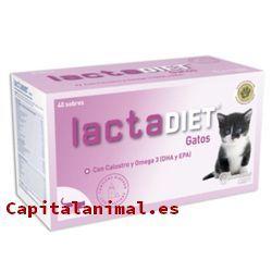 Listado de leches para gatos para comprar – Las más solicitadas