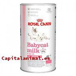 leches royal canin para gatos baratos