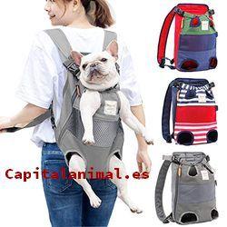 mochilas porta perros baratos