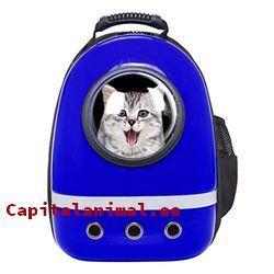 mochilas transportines para gatos baratos
