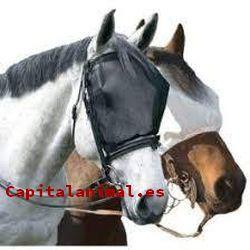 mosqueros para caballos baratos