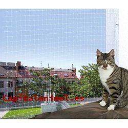 Mosquitera para gatos: ¿Merece la pena su compra online?
