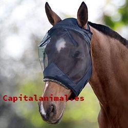 orejeras para caballos baratos
