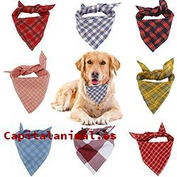 pañuelos para perros baratos