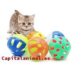 Catálogo de pelotas para gatos para comprar por internet