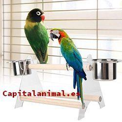 perchas de aves baratos