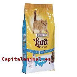 piensos fish4dogs para gatos baratos