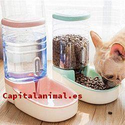 piensos gastrointestinal para gatos baratos