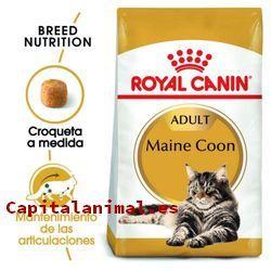 piensos libra para gatos baratos