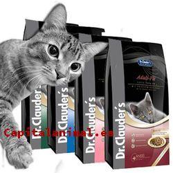piensos mercadona para gatos baratos