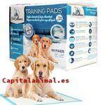 Rebajas online de piensos para perros addiction