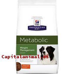 piensos para perros digestivo para perros baratos