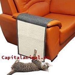 Mejores protectores de sofa para gatos de este año - Cómpralos Online
