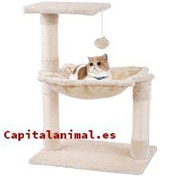 rascadores amazon para gatos baratos