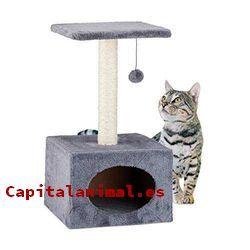 rascadores de carton para gatos baratos