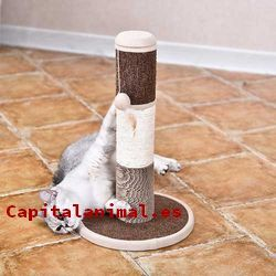 rascadores de paredes para gatos baratos