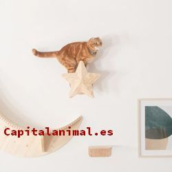 Lista de rascadores para gatos para comprar – Los más solicitados