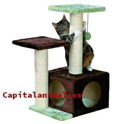 rascadores zooplus para gatos baratos