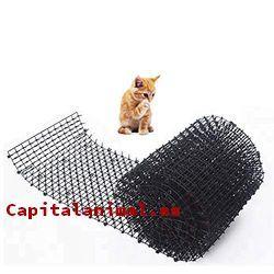 repelentes para gatos exterior baratos