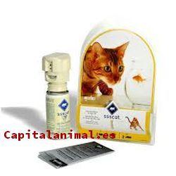 Repelente para gatos: ¿Merece la pena su compra online?