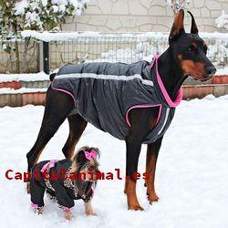 ropas para perros baratos