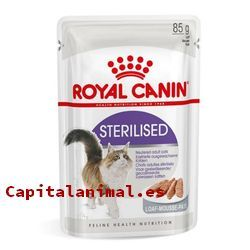 royal canin anallergenic gatos baratos