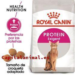 royal canin gastrointestinal para gatos baratos