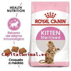 royal canin hipoalergenico gatos baratos