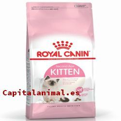 royal canin obesity para gatos baratos