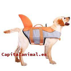 salvavidas para perros baratos