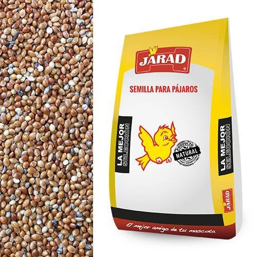 semillas de mijo baratos