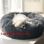 Reviews y opiniones de sofas para perros para adquirir Online