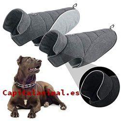 sombreros para perros baratos
