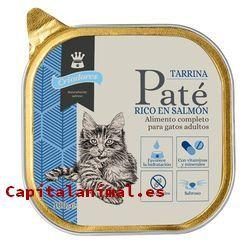 Recopilación de tarrinas para gatos para adquirir on-line