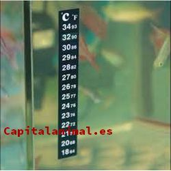 termometros para pecera baratos