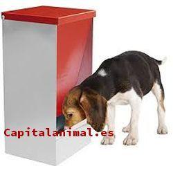 tolvas para perros baratos