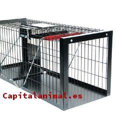 trampas para gatos baratos