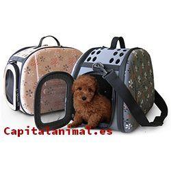 transportadoras para perros baratos