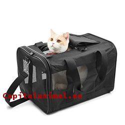 transportines mochila  para gatos baratos