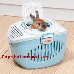 transportines para hamster baratos