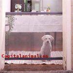 Vallas para perros caseras Inconvenientes y Ventajas
