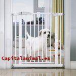 Mejores vallas para perros en casa de este año - Cómpralas Online
