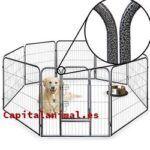 Las 10 mejores vallas para perros exterior Online