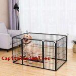 Vallas para perros metalicas ¿Compensa su compra?