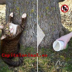 ¿Cuál es el mejor veneno para gatos para el 92% de los consumidores?